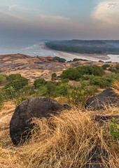 Elements (Yogendra174) Tags: beach grass landscape rocks konkan