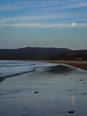 Bakers Beach, Tasmania (Steven Penton) Tags: beach australia tasmania