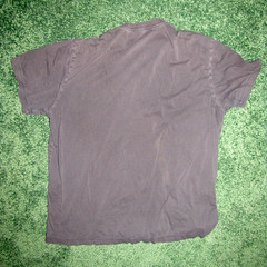 t shirt 02b (seanduckmusic) Tags: tshirts blouses witsendep