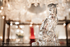 Baccarat | Instagram: @bayanalsadiq (Bayan AlSadiq) Tags: red france glass beauty lights commercial saudi shops jeddah decor luxury brands ksa commercialphotography saudiphotographer