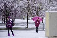_APB2827 (2) (plazaberribaranain) Tags: nikon nieve baraain invierno agustin navarre elurra navarra nafarroa negua d7200 agustinpea nikond7200 plazaberri plazaberriinfo