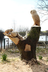 Chainsaw Carving (NTG's pictures) Tags: lake mouse chainsaw carving burns owl mick rochdale littleborough hollingworth