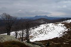 mg egy kis tl / at the end of winter (debreczeniemoke) Tags: winter mountains landscape hegy tjkp gutin tl rozsly gutinhegysg igni olympusem5 gutinmountains