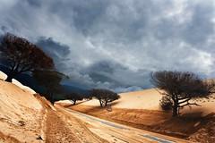 Todas las fotos-1338 (javiercollado) Tags: espaa costa spain paisaje andalucia d750 estrecho estrechodegibraltar natraleza