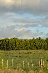 A Rainbow Over New Zealand Countryside (iriskh) Tags: newzealand rainbow hdr