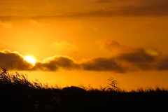 DSC_0102 (Rolf Lawrenz) Tags: landscape sunsetsunrise