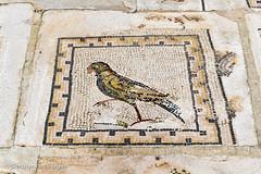 Bird Mosaic (simonevanbergen) Tags: tree architecture garden spring spain ruins roman mosaic seville structure italica svb romanemperor simonevanbergen