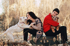 Puppy Love II (Kelly McCarthy Photography) Tags: autumn woman dog man fall love dogs smile animal outdoors kiss couple bokeh smiles canine romance trunk romantic animalplanet canines catchycolorsred bokehwhores