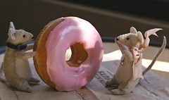 Look. Round with a hole in the middle. Strawberry frosting. (chloe & ivan) Tags: dayofthedonut