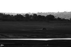 IMG_0152 (briejeshpatel) Tags: light india white macro closeup bangalore karnataka bahubali vibgyor shravanabelagola chandragiri vindhyagiri gommateshvara channarayapatna canon7d jainmonk briejeshpatel sevenwondersofindia canon100mmf28macrol