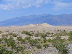 IMG_6778 (Jackie Germana) Tags: california usa deathvalley furnacecreek badwaterplace