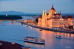 Budapest Parliament Dawn