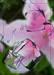 Faux Ice Cubes (karith) Tags: pink abstract composite experiment icecubes karith