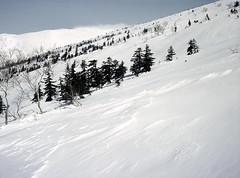 Snow field in spring (threepinner) Tags: snow ski spring skiing sunny negative   daytime biei fujica shirogane 80mm f35  selfdeveloped iso160   ebcfujinon mountainsnaps gf670 mtoputateshike  taisetsunationalpark