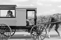 tourist rides (zac evans photography) Tags: street summer photo ride outdoor pennsylvania candid country photojournalism tourist amish lancaster keystone buggy birdinhand lancastercity travelunrated2015