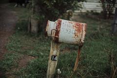 Viajando de Kombi - Dia 1 (Fabio Oliveira Photography) Tags: lifestyle australia melbourne greatoceanroad fabiooliveira triberedleaf juefabio hireakombi kombisafari