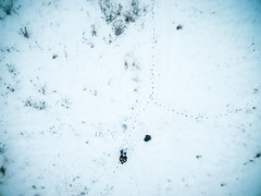 man manages quadrocopter on snowy field (gekaskr) Tags: winter white snow man cold nature beautiful field season landscape photography one countryside photo scenery frost alone view outdoor snowy top country scenic footprints frosty scene surface panoramic aerial covered wilderness activity wintry manage managing fromhigh quadrocopter fromqadrocopter