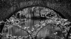 Under the Bridge (John fae Fife) Tags: urban blackandwhite bw luxembourg grund xe2 fujifilmx