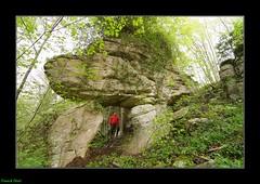 Porte de pierre dans le Bois des Essarts de Malans (francky25) Tags: de pierre des le porte karst franchecomt dans bois doubs malans essarts