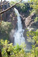 Wangi Falls (Mister Rad) Tags: waterfall bush australia falls northernterritory litchfieldnationalpark wangi nikond600 nikon50mmf14g