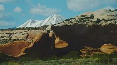 Alive [Explore 04/22/16] (Alvin Harp) Tags: nature utah desert scenic april backcountry moab archs 2016 wilsonarch naturesbeauty teamsony sonyilce7rm2 alvinharp