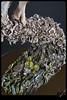 Flower dance (ViKisART) Tags: sculpture flower art artist dolls handmade ooak crafts skulptur exhibition polymerclay artdoll flowerpower ausstellung puppe dollmaking скульптура кукла livingdoll dollmaker handarbeit supersculpey выставка unikat flowerdance polymerclayart творчество ярмарка künstlerpuppen полимернаяглина сделаноруками авторскаякукла puppenfrühlingkuenstlerpuppen кукольнаяскульптура творю кукольнаявесна