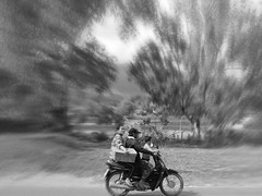 Calm day (kawabek) Tags: thailand motorcycle chiangmai タイ バイク เชียงใหม่ ประเทศไทย チェンマイ รถจักรยานยนต์
