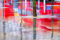BRY_20130108_IMG_4011_.jpg (stephenbryan825) Tags: trees reflection rain liverpool abstracts wetpavement selects