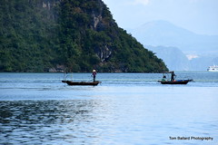 D72_7554 (Tom Ballard Photography) Tags: vietnam halongbay tourboats bayclub 20151118