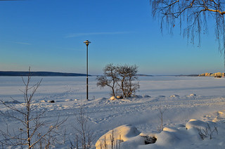 Blue #winter #Finland #Snow #Landscape