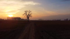 Sunset On Road (SplitShire) Tags: road sunset summer sky sun hot rural sunrise lens outside midwest warm angle farm horizon country wide panoramic aerial flare land agriculture plains drone