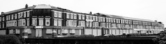 Gwestyau a adawyd  / Abandoned hotels - Wimbourne Place / New South Promenade, Blackpool (Rhisiart Hincks) Tags: england blackandwhite bw abandoned blancoynegro architecture coast seaside decay cte lancashire angleterre blackpool abandonment inghilterra blancinegre lloegr fylde blancetnoir  arfordir duagwyn aod arkitektura gadawedig ingalaterra dilezet brosaoz sirgaerhirfryn sasana dadfeilio fyldecoast czarnobiae holidayresort zuribeltz feketefehr anglie dirywiad anglaterra dubhagusbn gwennhadu siyahvebeyaz  kostalde juodairbalta powsows sasainn schwarzundweis  ernabl mustajavalkoinen utzita  ailtireachd crnoibelo pennserneth angletrra  ngilandi dirywio beheraldi utzitasun trigsinn melnsunbalts warziskar cyrchfangwyliau negruialb dubhagusgeal adeiladouriezh  rnoinbelo zwartenwit