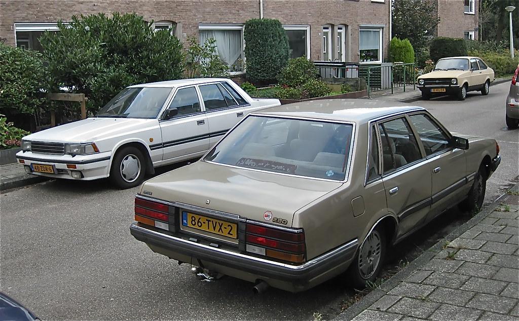 escort noord nederland geatis s