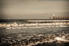 Belgian North Sea (Guy Peeters) Tags: groen