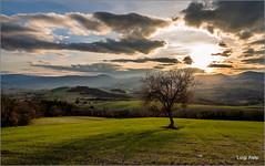 tramonto in campagna (Luigi Alesi) Tags: light sunset sky italy sun verde green nature grass clouds san italia tramonto nuvole country natura severino campagna erba sole luce marche macerata cilo sanseverino countrysside gaglianvecchio