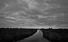 Grey cloudy day (M a u r i c e) Tags: sky holland water netherlands grass wind wideangle explore polder efs1022mm ultrawidezoom