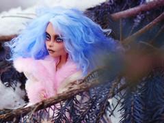 The snow Queen2 (tehhishek) Tags: blue winter snow cold tree monster high model ooak queen custom britt mattel the bloodgood headmistress dahal
