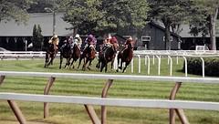 On The Turf (Shot by Newman) Tags: trees summer horses grass 35mm daylight rail jockeys fujifilm turf stables horserace fuji400 nyra saratogany saratogaracecourse shotbynewman