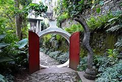 El Castillo de Edward James (marthahari) Tags: méxico mexico arquitectura hidalgo sierragorda airelibre sanluispotosí huastecapotosina