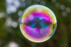 Bubbles (BusterBB001) Tags: colour circle scotland floating bubbles blowing sphere round bubble float fleeting