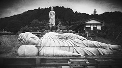 [15.07.28]  Buddha Black And White Temple Black & White Japan Monochrome Nara Cool Japan Japanese   Buddhism  Kannon  No People Cloud And Sky Beauty  Sky (kob@) Tags: sky blackandwhite monochrome beauty japan temple japanese blackwhite buddha buddhism nopeople nara kannon    cooljapan  cloudandsky