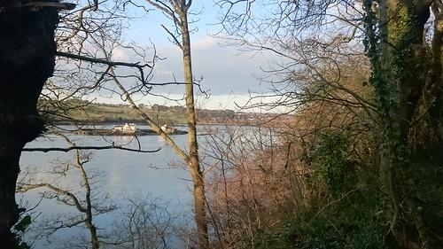 Afternoon walk at Treborth
