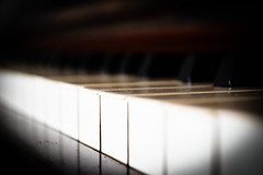 Haze (Elysia Ratcliffe) Tags: light blackandwhite bw music black colour art beautiful closeup composition contrast keys nikon piano follow dslr vigenette nikond3300