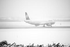 D-AIRH (valentin hintikka) Tags: winter blackandwhite bw snow fog helsinki airbus snowfall departure takeoff lufthansa hel helsinkivantaa sleeting a321 22r efhk dairh slushsnow lh849 helfra