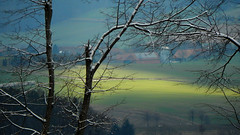 Two Seasons I (offroadsound) Tags: morning trees light sun snow green forest gate hills valley behind transition beneath wondering daydream wandering between twoseasons betweenbeneathbehind