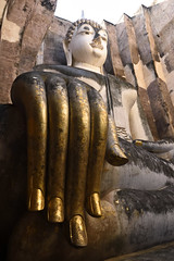 _GRL7750 (TC Yuen) Tags: architecture thailand ruins asia southeastasia buddha unesco worldheritage norththailand ancientcapital