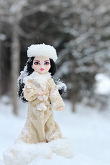 (Russian Girl) (Mariko&Susie) Tags: winter snow beauty hat forest fur toy toys outfit woods doll dolls russia outdoor snowy coat royal susie snowing swanlake mariko russian letitsnow tchaikovsky duchess 50mmlens eah swanqueen marikosusie discovertheworldwithbarbie canoneos600d canoneosrebelt3i canoneoskissx5 everafterhigh royalorrebel duchessswan sistersmarikosusie