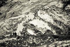 -39 (billlushana1) Tags: sunset mountain snow rock canon landscape outdoor sony taiwan  peaks  taroko hualien  tarokonationalpark  superwide hehuanshan ef1740mmf4lusm  mountain 14 100peaksoftaiwan taiwantop100peaks sonya7r