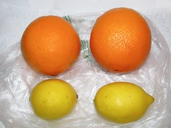 Pair of Oranges and Lemons (Pest15) Tags: fruit lemons pairs citrus oranges vitaminc nationalorangesandlemonsday