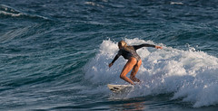 laura enever roxy pro (rod marshall) Tags: laura surfing females snapperrocks roxypro bikinisurfing lauraenever snapperrockssurfing roxypro2016 wslpro